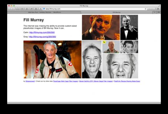 Fill Murray